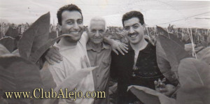 Alejandro-Robaina-cigars-CA 7 a